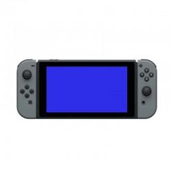 Écran Bleu Nintendo Switch